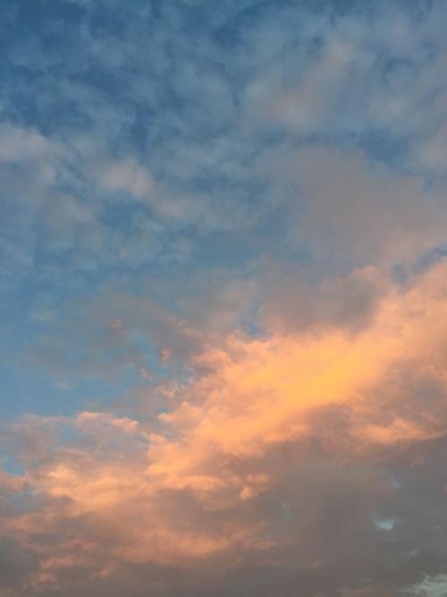 今日の空…♡