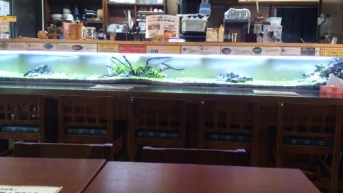 今日は誰の誕生日|子供の誕生会に使える水族館の様なレストラン