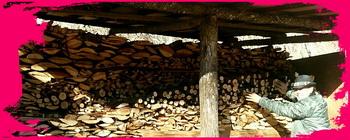 春の登り窯焼成用の薪、準備完了でーす。国立けんぼう窯