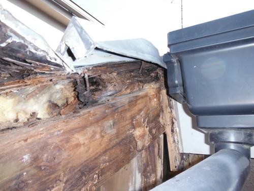 屋根からの雨漏り修理、その前に原因調査?予算は?