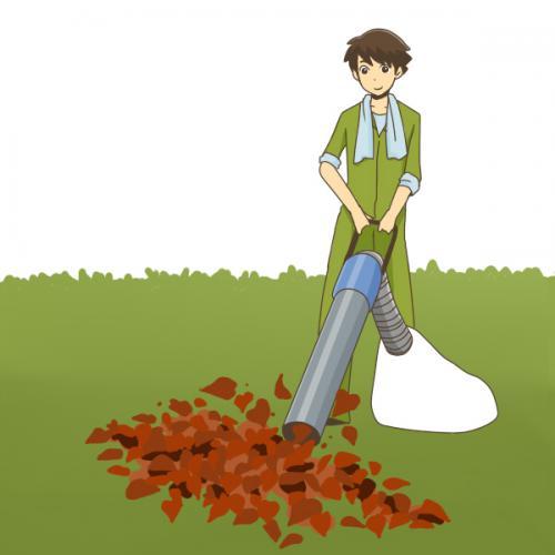 草むしり、植木の撤去、伐採、庭掃除、草刈、格安