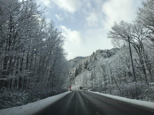 雪が降る北海道で太陽光発電を設置するメリットは?