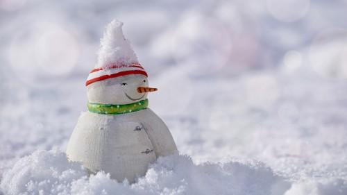 雪国北海道の人は、雪道の歩き方が違う?