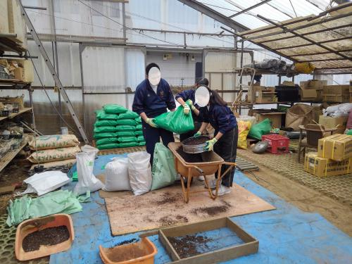 中学生さん達が、植木苗木の郷に職業体験!