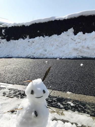 雪が降りましたが乾燥してますね~