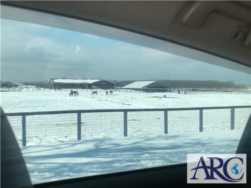太陽光発電用土地視察中に見て感じるTHE北海道♪