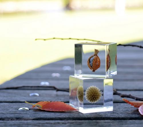 自然の造形美-Sola cube- センスあるインテリア雑貨