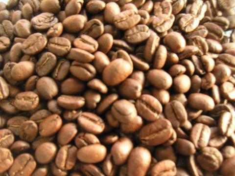 グァテマラのコーヒー リンダ